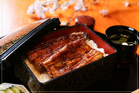 Unajū (lunch box with eel)